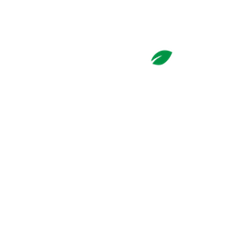 Basil 1791 – Best Sushi & Thai around in Downtown Hamilton, OH Logo